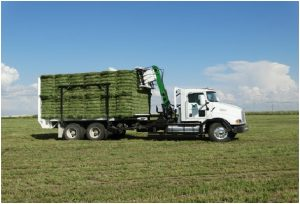 Bale Stacker white truck full load